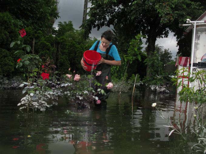 Flood, Budakalasz, Hungary, 2013