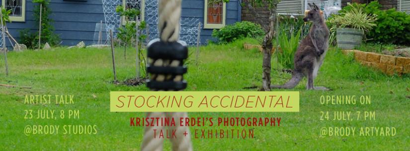 Krisztina-Erdei-cover2